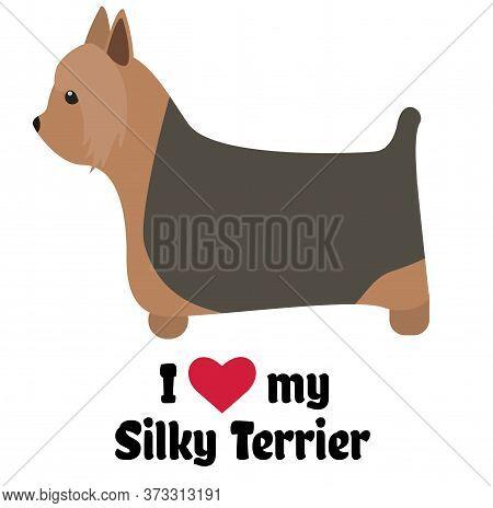 I Love My Silky Terrier , Illustration On White Background