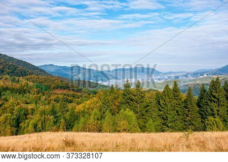 Autumn Evening In The Misty Valley. Open View With Forest On The Meadow. Beautiful Landscape Of Carp