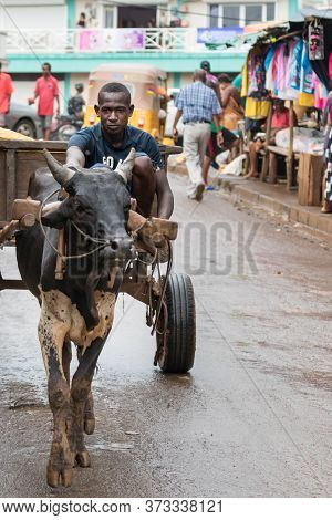 Nosy Be, Madagascar - January 17th, 2019: A Local Malagasy Black Man Is Driving A Wooden Cart Pulled