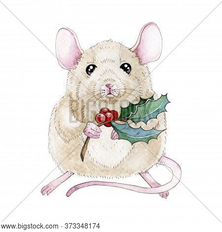Watercolor Mouse Or Rat Illustration With Nice Christmas Holly Branch. Cute Little Mouse A Simbol Of