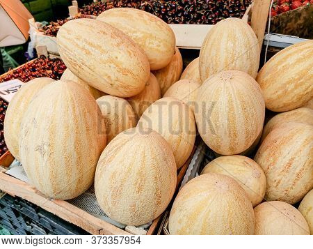 Big Ripe Yellow Melons On The Counter Farm Market. High In Vitamins A And C, American
