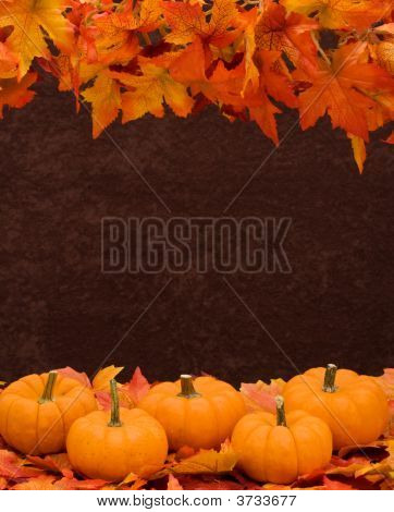 Fall Harvest Border