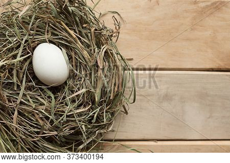 Chicken Egg In Hay Nest, Top View. Easter Concept
