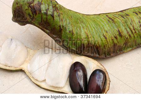 Small Guaba Seed and Pod