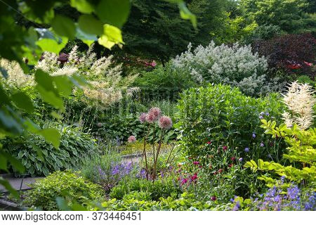 Mixed Borders In A Public Garden Park With Perennials For Sunny And Shady Plant Beds, Selected Focus