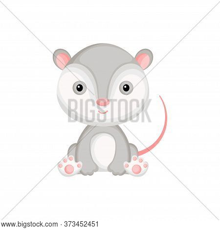 Cute Baby Opossum Sitting Isolated On White Background. Adorable Animal Character For Design Of Albu