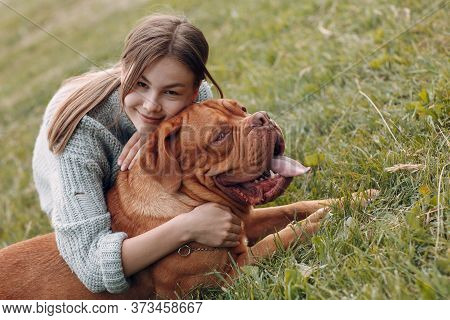 Dogue De Bordeaux Or French Mastiff With Young Woman At Outdoor Park Meadow