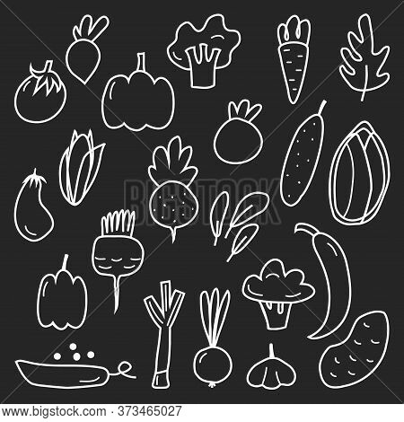 A Large Set Of Different Vegetables. Cucumber, Tomato, Corn, Eggplant, Onion, Peas, Pepper, Broccoli