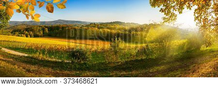 Panoramic Rural Landscape In Autumn With Vineyards, Hills, Vibrant Blue Sky And Rays Of Sunlight, Fr