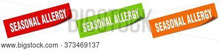 Seasonal Allergy Sticker. Seasonal Allergy Square Isolated Sign. Seasonal Allergy Label