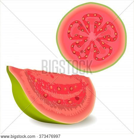 Realistic Illustration Cut Guava Fruits. Fresh Half Guava  And Slice Isolated On White Background. C
