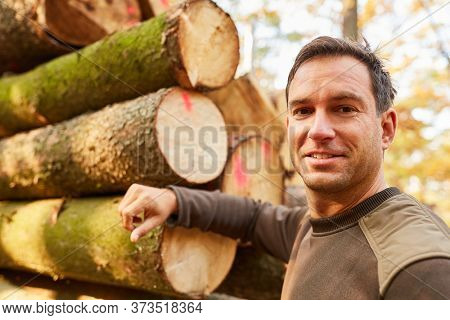 Forest worker or forestry leans against pile with tree trunks at the wood harvest