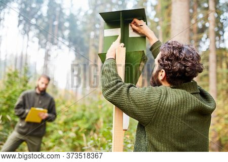 Forstwirt trainee and forester control together a bark beetle trap
