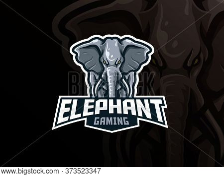 Elephant Mascot Sport Logo Design. Elephant Animal Head Mascot Vector Illustration Logo. Wild Elepha