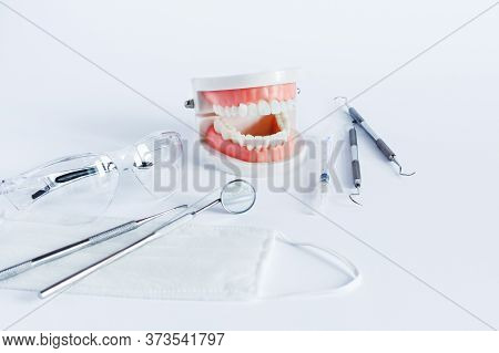 Dentistry Tools For Teeth Dental Care And Treatment On White Background. Dental Model Of Jaw. Profes