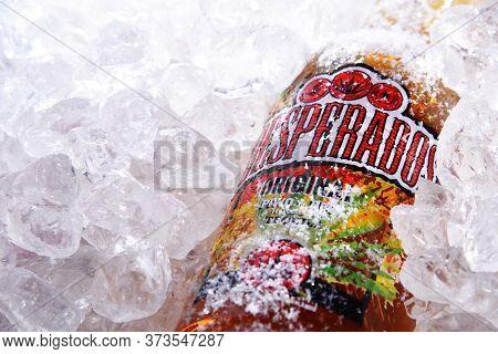 Bottles Desperados Image Photo Free Trial Bigstock