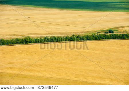 Fields And Meadows. Aerial View. Landscape.