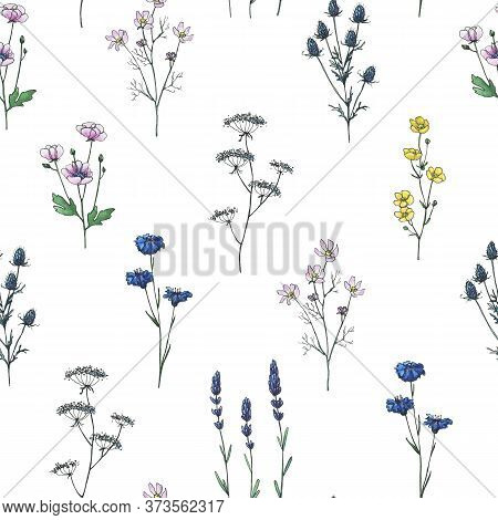 Abstract Wildflowers. High Quality Hand-drawn Watercolor And Line Art Seamless Patterns Of Wildflowe