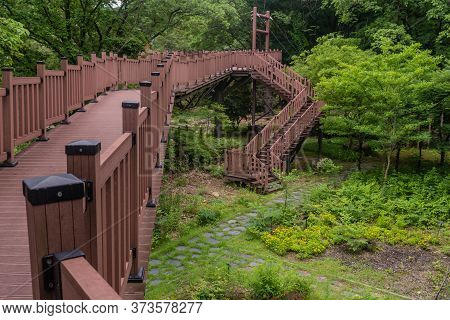 Wooden Board Walk Leading To Stairs That Descend Into Small Garden In Recreational Forest.