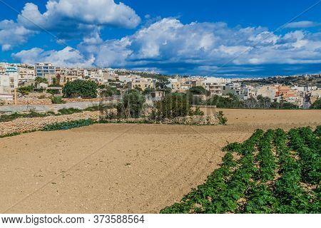 Landscape Of The Island Of Gozo, Malta