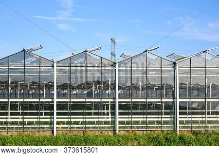 Glasshouse, Greenhouse Front View, Exterior Glass Facade With Open Windows And High Power Pylons In
