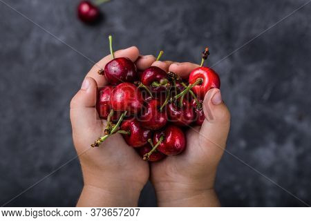 A Handful Of Fresh Red Cherries In Boy's Hands. Selective Focus.fresh Red Cherries. Texture Cherries