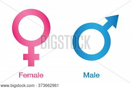 Vector Illustration Of Gender Icon Man And Woman. Sex Symbol. Gender Icon Male And  Female Symbol. G