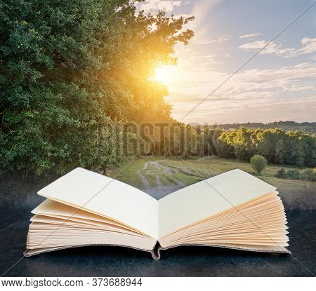 Digital Composite Concept Image Of Open Book Wth Summer Evening Sunshine Through Trees In Ashdown Fo