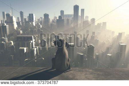 Sitting Elephant Looking At A Big City During Sunset . Industrialization And Global Warming Concept.