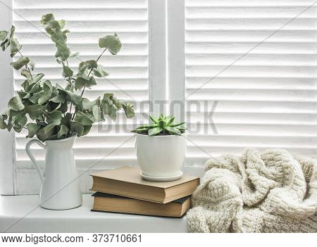 Cozy Rustic Home Still Life. On The Bright Window Jug Of Dry Branches,  Knitted Blanket, Books And S