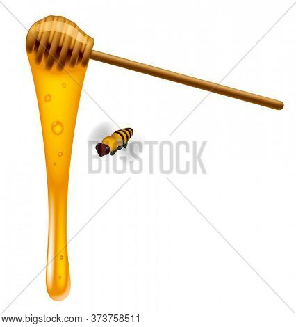 Honey stick with honey flowing down and a bee isolated on white background