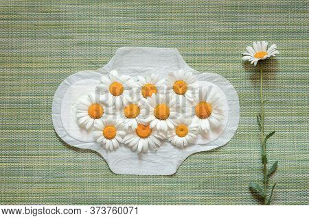 Feminine Sanitary Napkin On A Green Background, Daisies On It, Natural Materials For Feminine Hygien