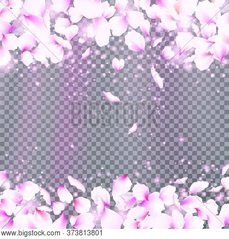 Rose Petals Frame With Falling Tender Pink Petals. Cute Falling Flower Petals. Vector Illustration F