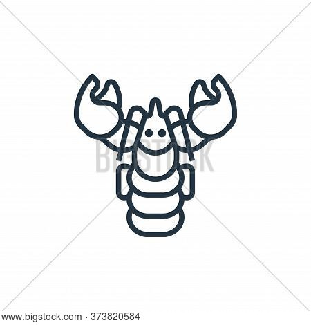 lobster icon isolated on white background from seafood collection. lobster icon trendy and modern lo