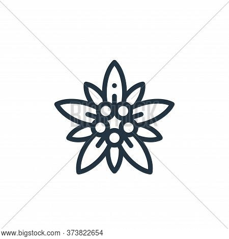 edelweiss icon isolated on white background from europe collection. edelweiss icon trendy and modern