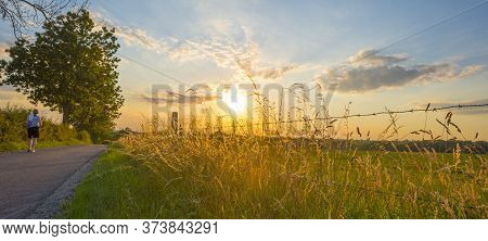 Grassy Fields And Vegetables In Green Rolling Hills Below A Blue Sky In The Light Of Sunset In Summe