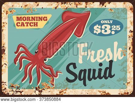 Squid Seafood Metal Rusty Plate, Vector. Sea Squid Meat And Fillet, Calamari Meals Menu Retro Design