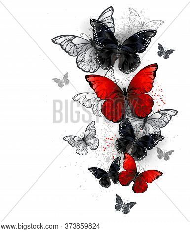 Flock Of Flying, Realistic, Red And Black Morpho Butterflies On White Background With Drops Of Paint