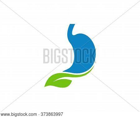 Nature Stomach Logo Vector Template, Creative Stomach Logo Design Concepts