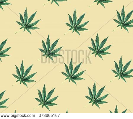 Pattern Of Green Cannabis Leaves On A Beige Background. Medical Marijuana, Top View