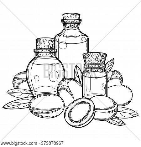 Three Graphic Oil Bottles Surrounded By Argan Plants