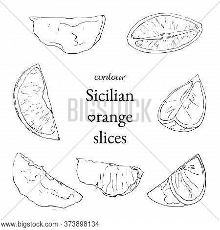 Set Of Contour Sicilian Orange Diffirent Slices