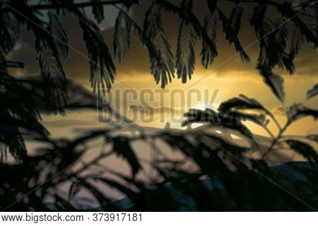 Dramatic Sunset Dusk Sky In A Mountainous Landscape Seen From Behind Palm Leaves.