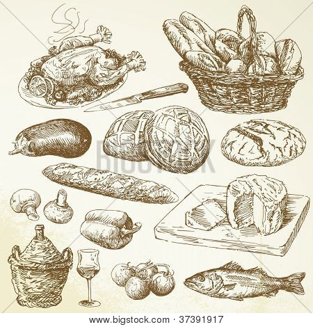 food collection - hand drawn set