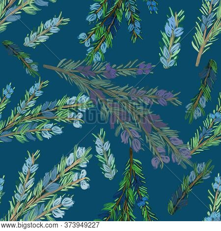 Seamless Pattern With Branches Of Rosemary Or Fir On Blue Background. Drawing. Multicolored. Kitchen
