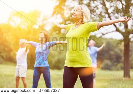 Group of seniors in yoga class in nature
