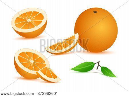 Orange Realistic With Leaves, Slice Citrus Fruits Isolated On White Background. Vector Illustration