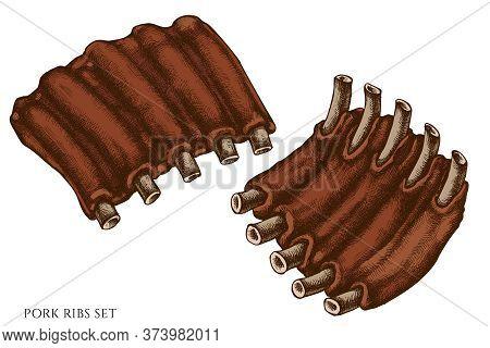 Vector Set Of Hand Drawn Colored Pork Ribs Stock Illustration
