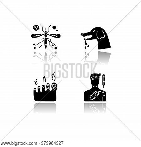 Viral And Infectious Diseases Drop Shadow Black Glyph Icons Set. Malaria, Rabies, Fungal Infection A