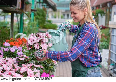 woman works as a florist in flower shop between many green plants